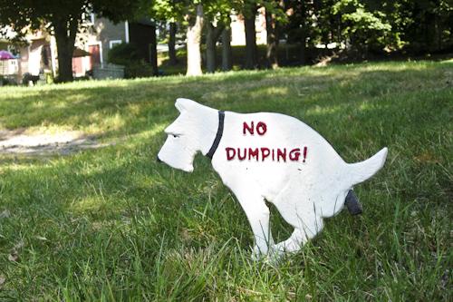dog dumping