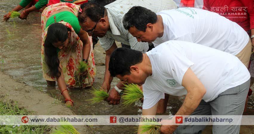 Asar 15 Dhaan Diwas Nuwakot Tupche